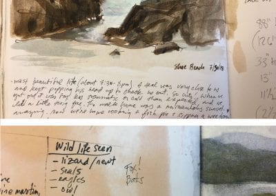 16-paint-write-wildlife_notes-1j76mji