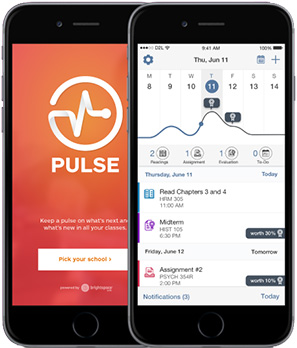 Pulse App looks on a phone