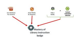 Mastery in Lib Instruciton badge