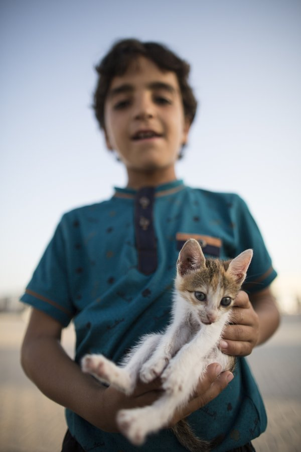 SANLIURFA, TURKEY - SEPTEMBER 24: Halim Rasim, 6, a Syrian refugee boy who fled Idlib with his family, poses with his pet cat at a tent city in the Akcakale District of Sanliurfa, Turkey on September 24, 2015. 260 thousand Syrians who have escaped war and found asylum in Turkey are now living in camps with opportunities that mean they don't miss what they've left behind. (Photo by Aykut Unlupinar/Anadolu Agency/Getty Images)