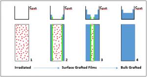 PEMFC Grafting Front Model