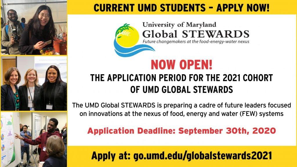 Global STEWARDS 2021 Application flier