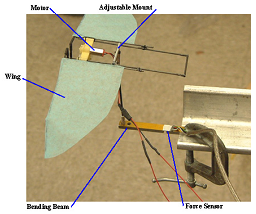 Fig. 3: Flapping-wing test in open-jet wind tunnel