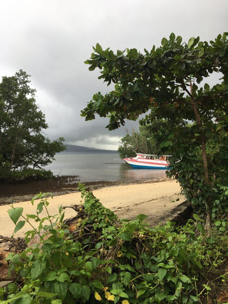 Mangrove Beach in Bunaken