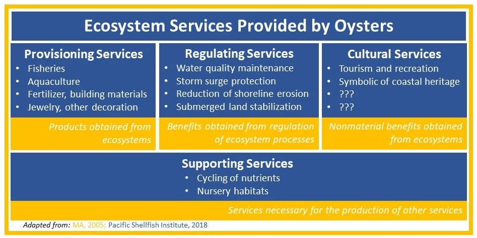 Oyster Ecosystem Services
