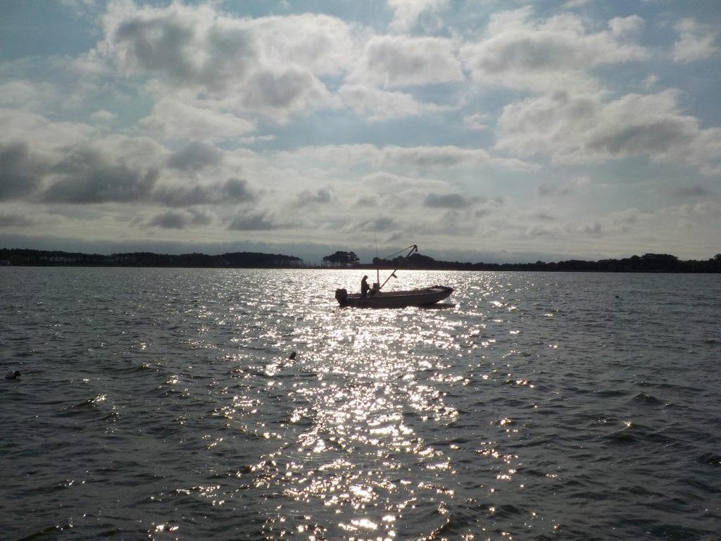 Watermen-Oyster Grower on skiff