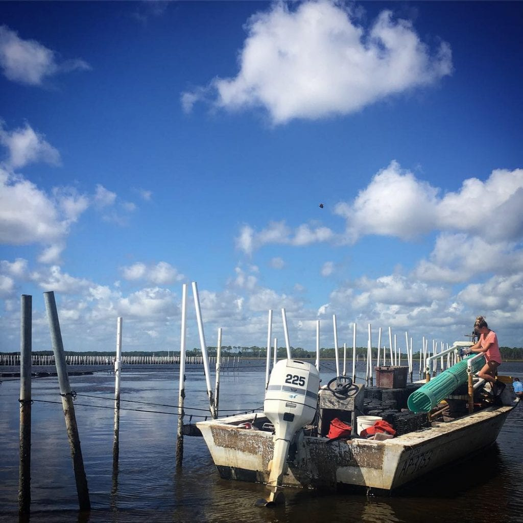 Wakulla Mystique oyster lease