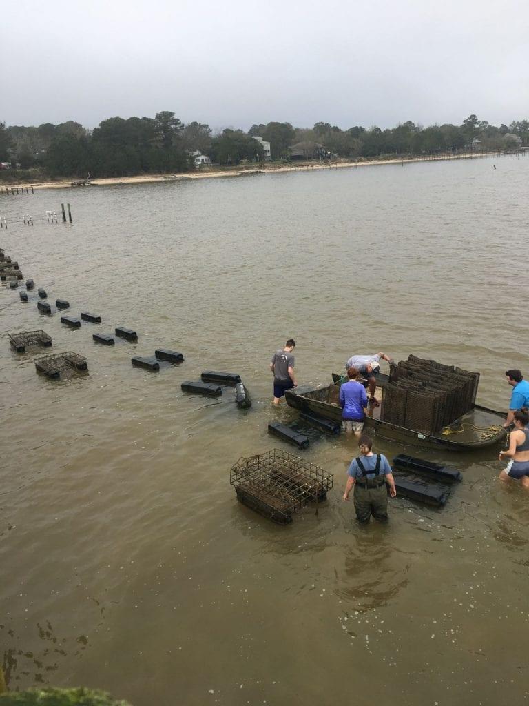 University of South Alabama Students working the Bama Bay lease.