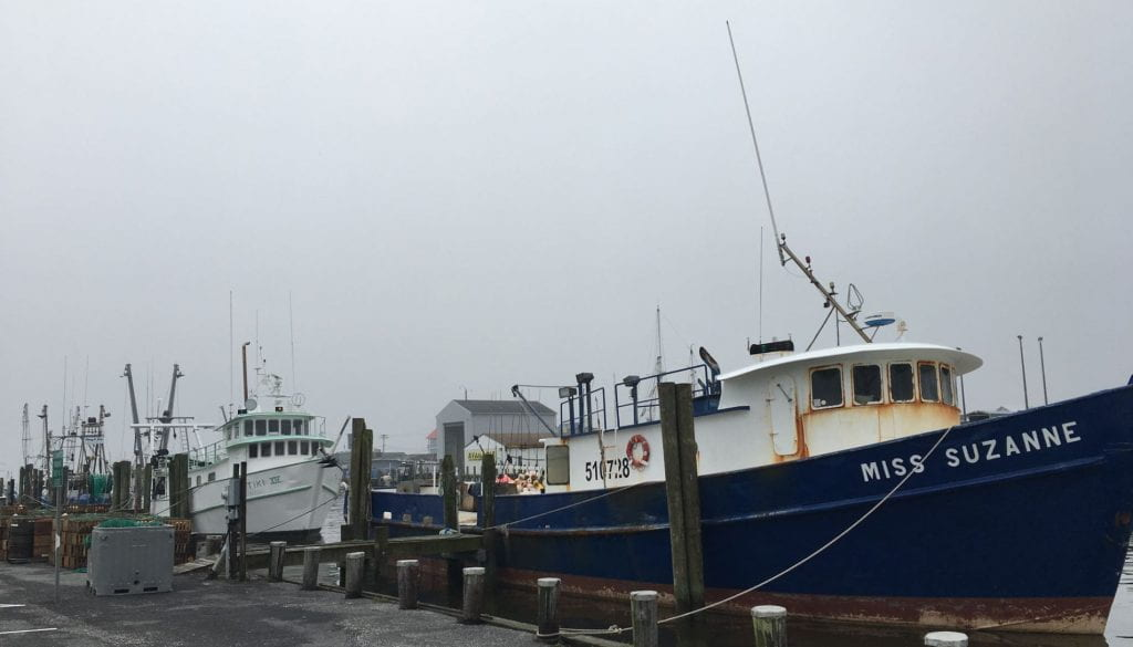 Ocean City docks