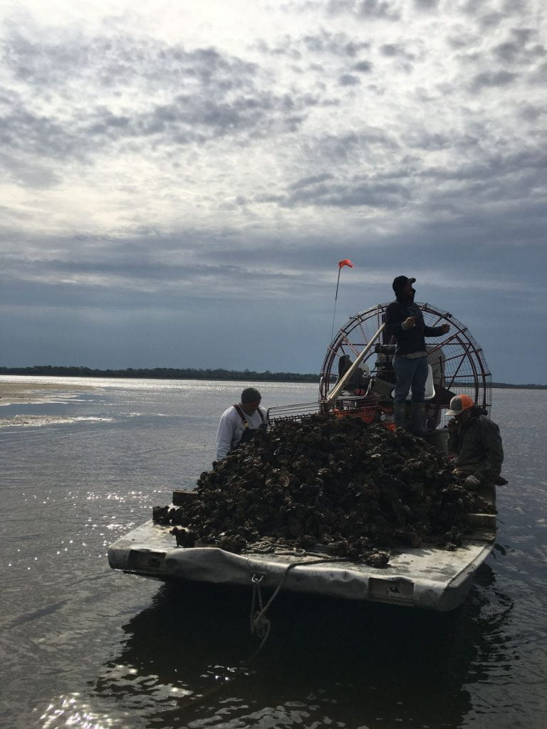 Cedar Key oyster harvesters