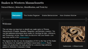 Snakes of Western Mass website