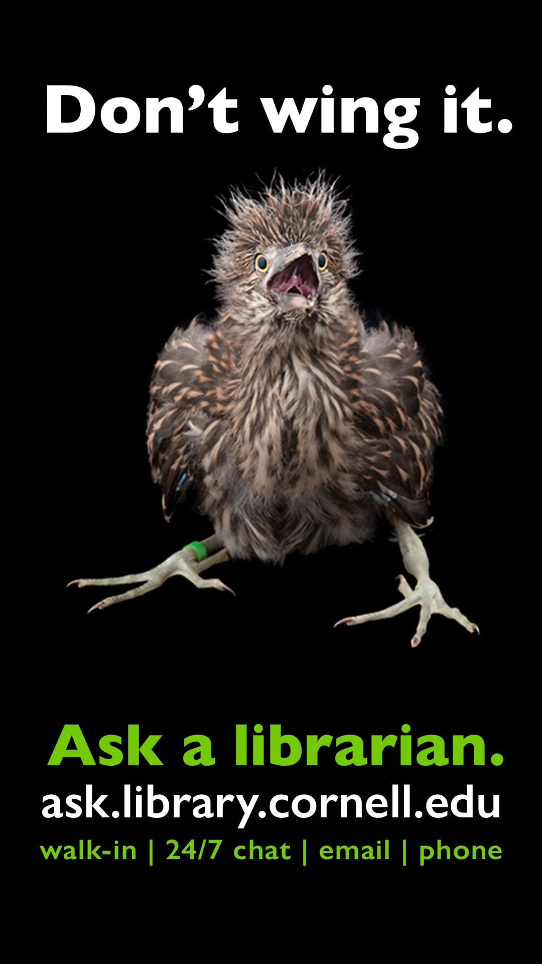 Don't Wing it. Ask a Librarian. Visit ask.library.cornell.edu for more infomation.