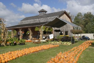Farmers Market at Rt 13 of New York State