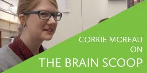 Corrie Monreau on the brain scoop
