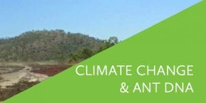 Climate Change and Ant DNA