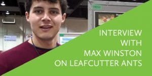 Interview with Max Winston on Leafcutter Ants