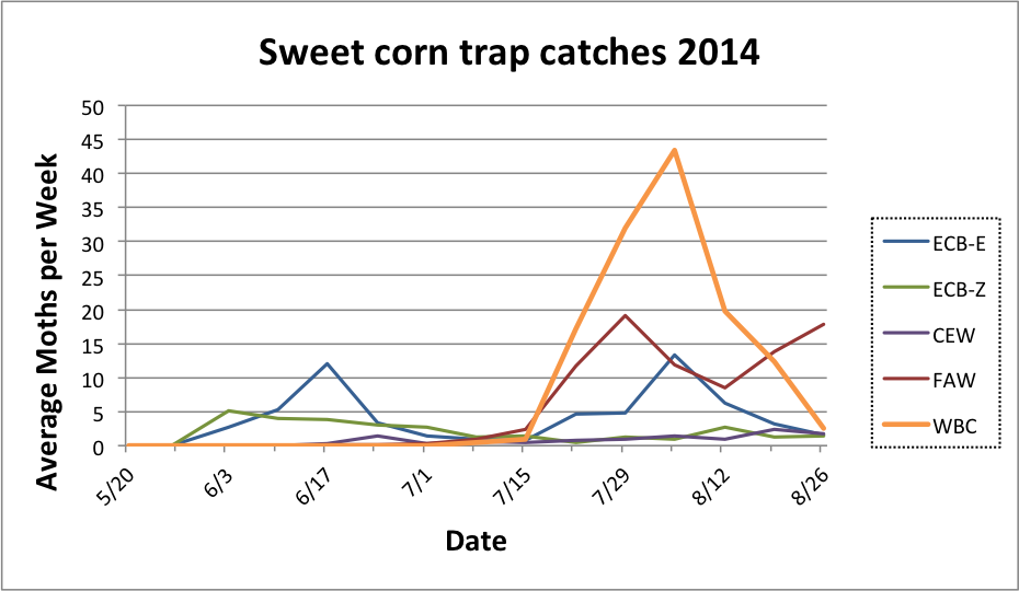 Average sweet corn trap catches for all reporting sites from 5.20.14 to 8.26.14.