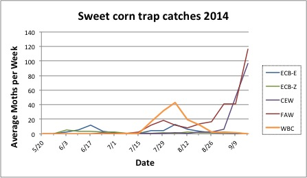 Average sweet corn trap catches for all reporting sites from 5.20.14 to 9.16.14.