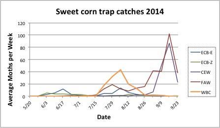 Average sweet corn trap catches for all reporting sites from 5.20.14 to 9.23.14.