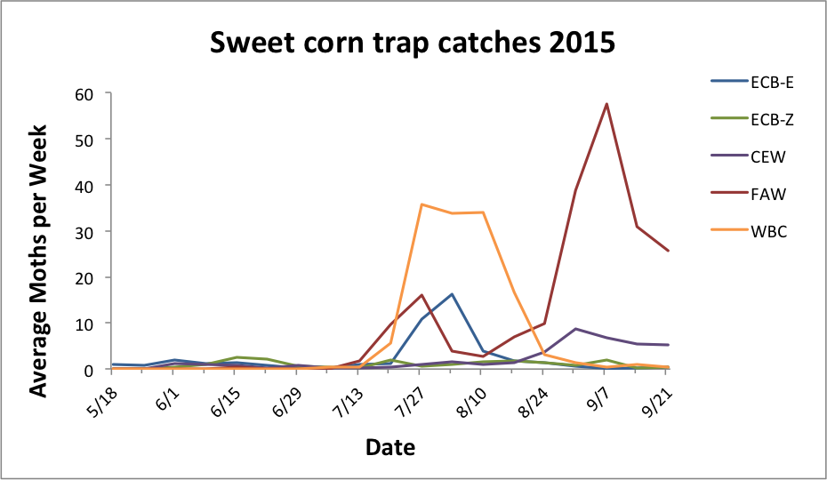 Average sweet corn trap catches for all reporting sites from 5.25.15 - 9.15.15