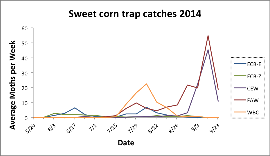 Average sweet corn trap catches for all reporting sites from 5.20.14 - 9.23.14