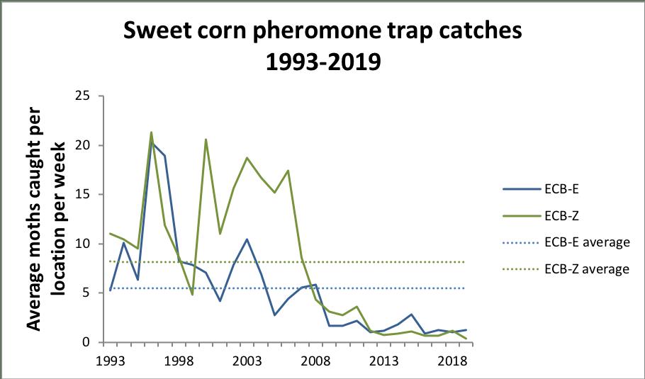 Average trap catches 1993-2019 for ECB-E and ECB-Z