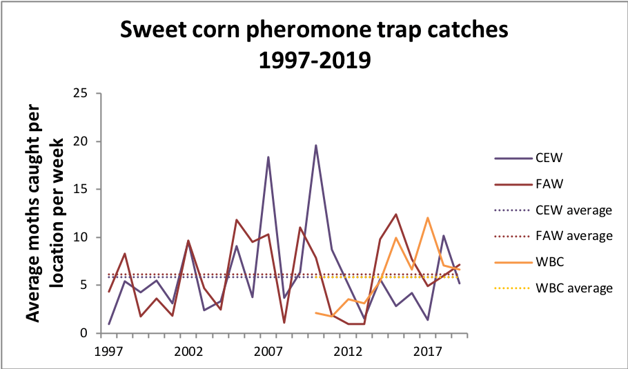 Average trap catches 1993-2019 for CEW, FAW and WBC.