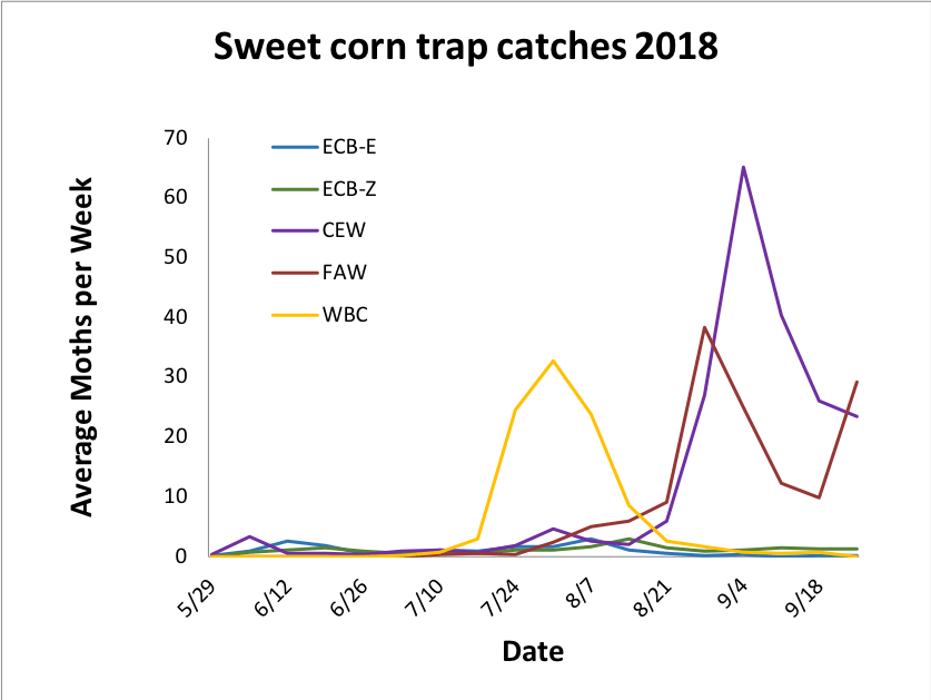 Average sweet corn trap catches from 5.29.18 – 9.25.18.