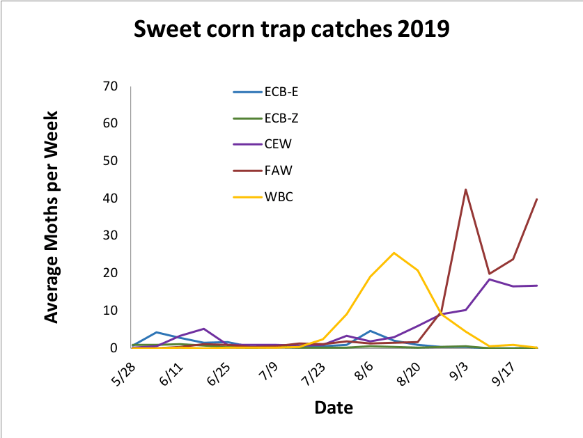 Average sweet corn trap catches from 5.28.19 – 9.17249.
