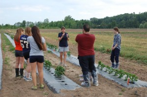 veg-field-course-2016