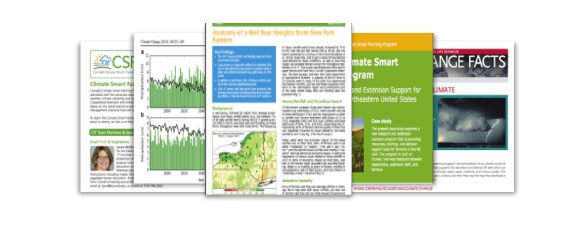 Images of our factsheets