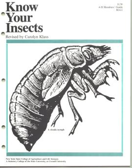 Know Your Insects Book