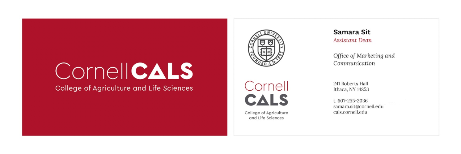 Cals brand project office of marketing and communications initial layouts for the new cornell cals business cards these customizable cards will be available colourmoves