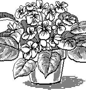 Plant Game Thumbnail
