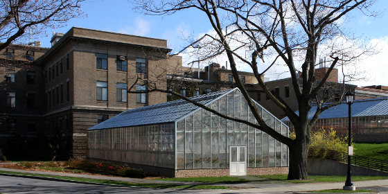 Artist's rendering of new conservatory.