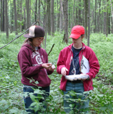Collecting larvae in a forest.
