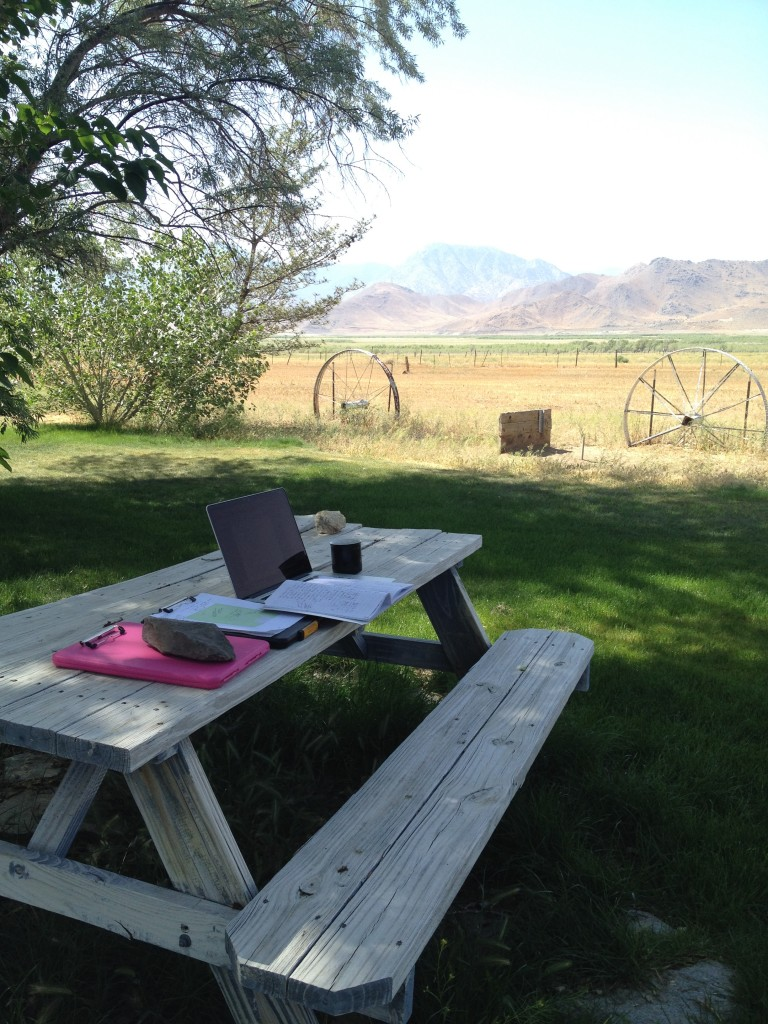My 'field office.' Not a bad place to make plans and dream about biology!