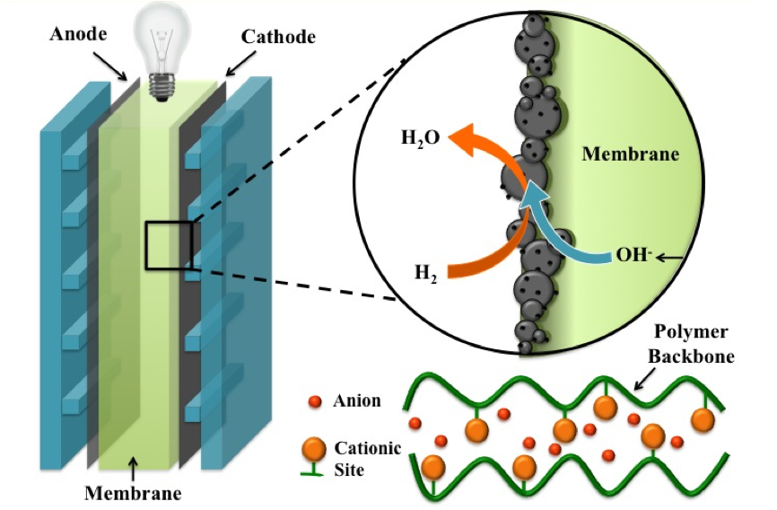 Figure 1: Schematic representation of an alkaline anion exchange membrane fueled by methanol.