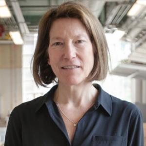 Photo of Professor Andrea Simitch