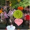 making fresh flower arrangements