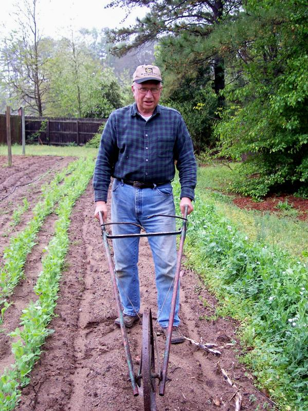Featured Gardener Farmer Dill