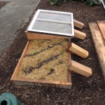 Mulching/Cold Frame