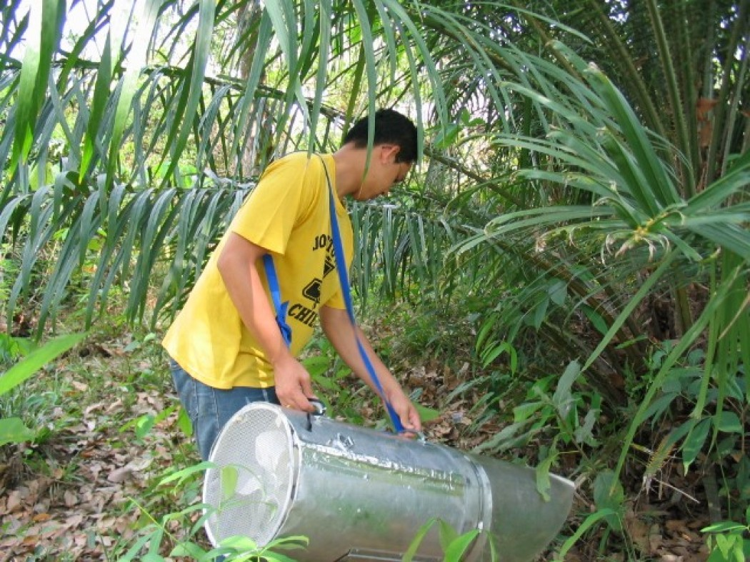 Collecting the Asian tiger mosquito in Thailand