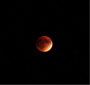 The Super Blood Moon as seen from Fuertes on September 27th, 2015.