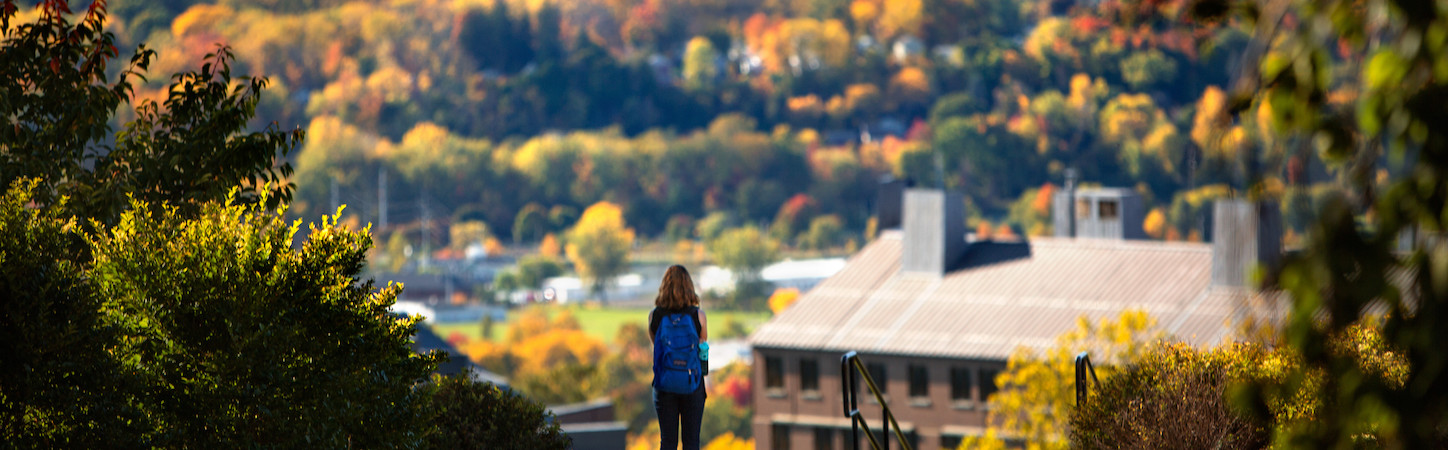 Photo of a student with a blue backpack facing away, looking down on campus in the distance