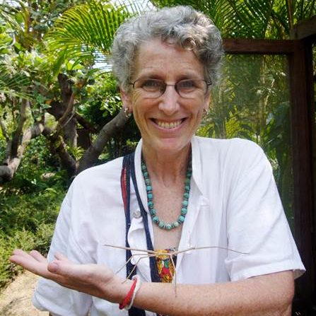 Photo of Barbara Lang