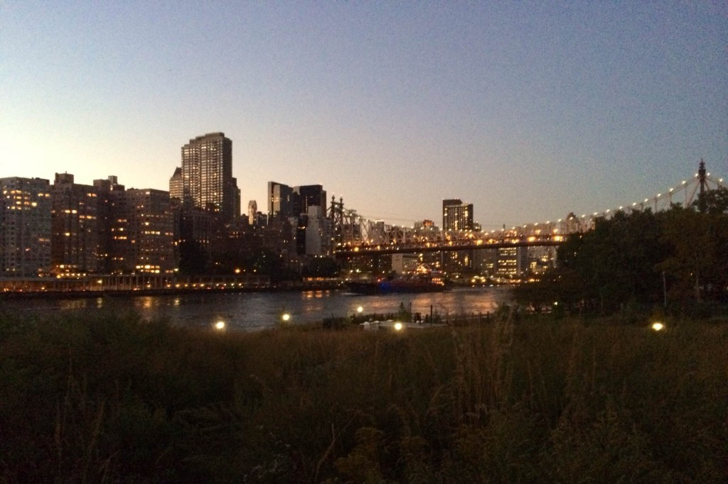 Roosevelt Island Clearing