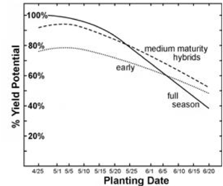 Effect on yeild of delayed planting of corn by hybrid maturity