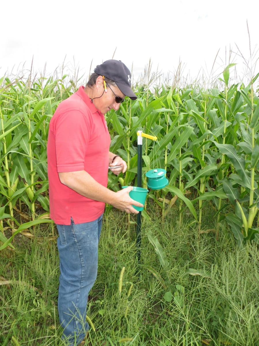 Fields Crop Specialist Mike Hunter is seen near a trap meant for pests entering this field corn plot.