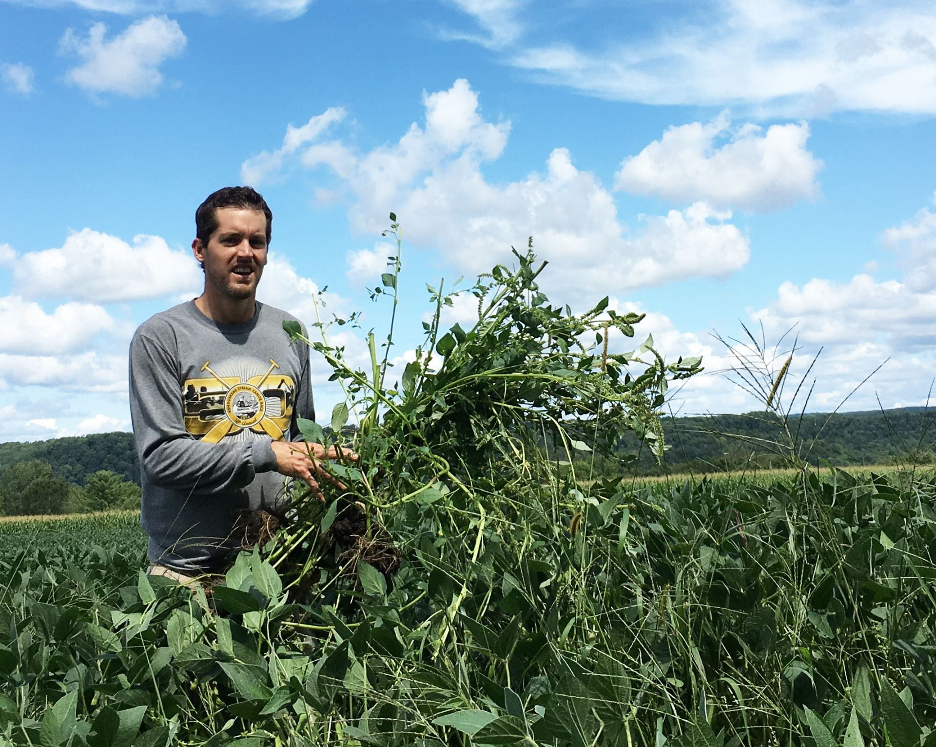 Photo of Dr. Bryan Brown with waterhemp weeds we removed from a soybean field.